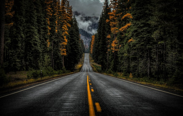 Wallpaper forest, road, clouds, mountain, cloudy, rainy ...