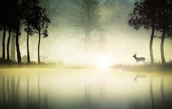 Picture nature, magic, vector