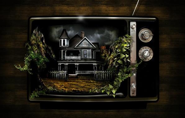 Picture house, plants, strange, TV