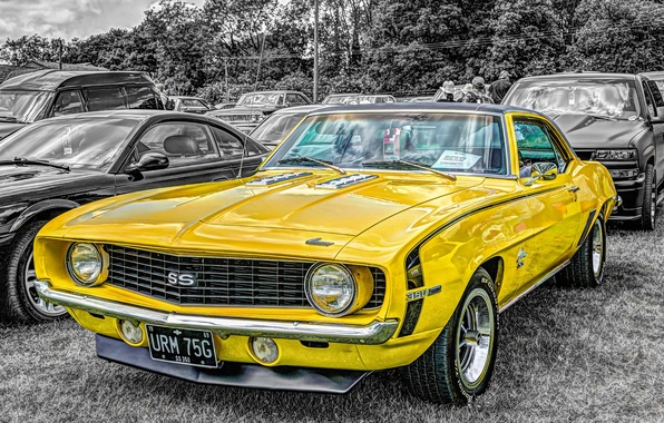 Picture 1969, muscle car, Chevrolet Camaro, 350SS