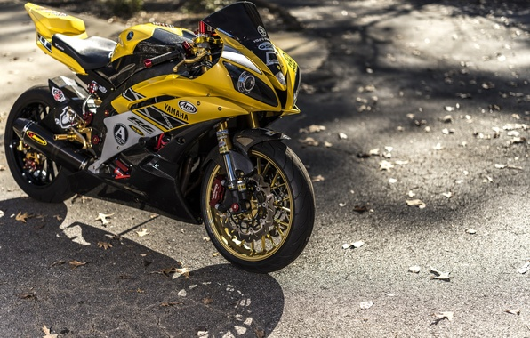 Picture road, design, motorcycle, Yamaha, sportbike