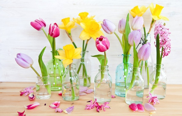 Picture flowers, yellow, petals, tulips, pink, daffodils, bottle
