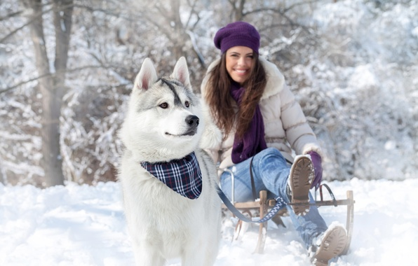 Picture winter, snow, nature, Girls, Dogs