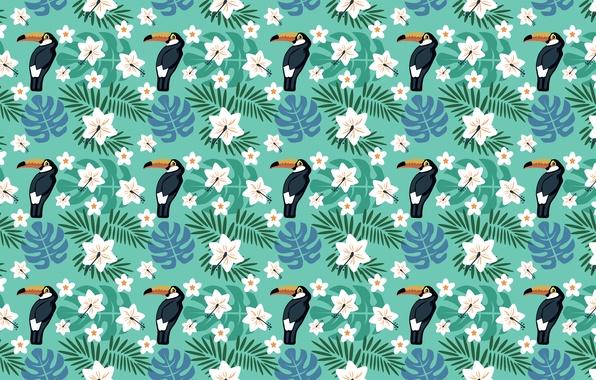 Picture flowers, birds, tropics, Toucan