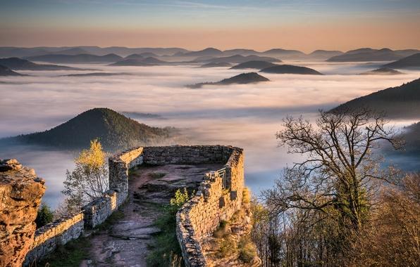 Picture Sunrise, Castle, Mountains, Mist, Fog, Forest, Hills, Palatinate, Wegelnburg, Ruins