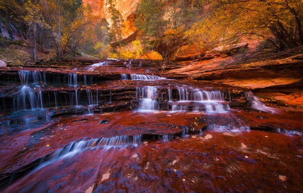 Picture autumn, trees, river, stream, rocks, foliage, waterfall, stream, Utah, USA, state, cascade Archangel, Zion national …