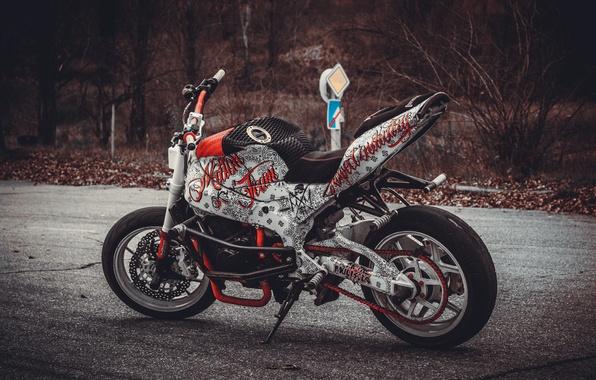 Picture 2006, Kawasaki, moto, ninja, stunt riding