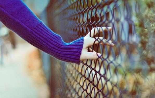 Picture mood, mesh, hand, blur, bokeh