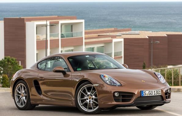 Picture Porsche, Cayman, Porsche, 2013, Caiman