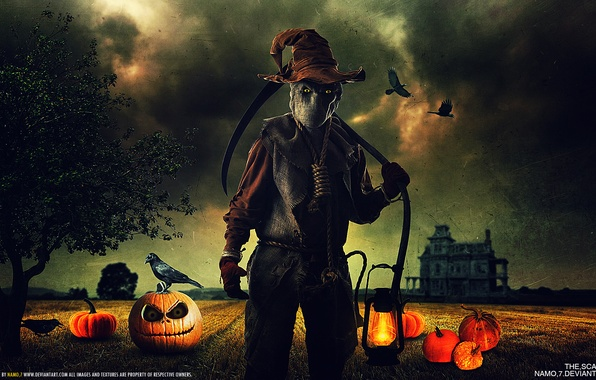 Picture eyes, house, danger, lamp, hat, pumpkin, crows, braid, Halloween, bag