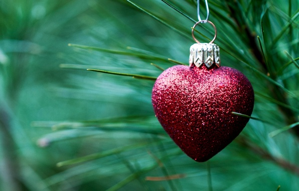 Picture needles, red, toy, heart, spruce, branch, New Year, Christmas, tree, decoration, Christmas, heart, holidays, New …
