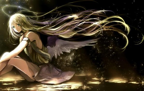 Photo Wallpaper Canarinu Kmes Light Wings Art Angel Halo Anime