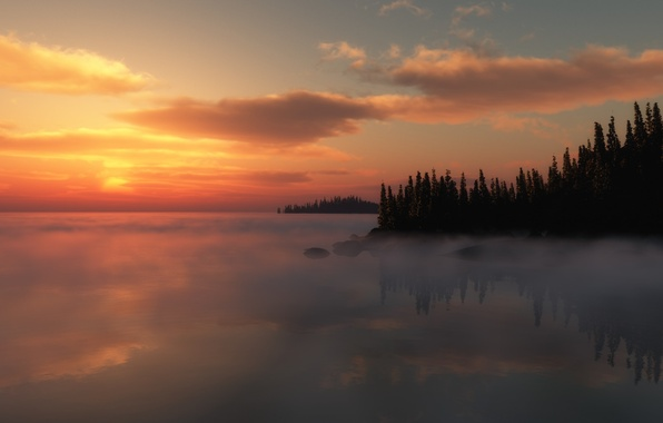 Picture trees, sunset, fog, lake