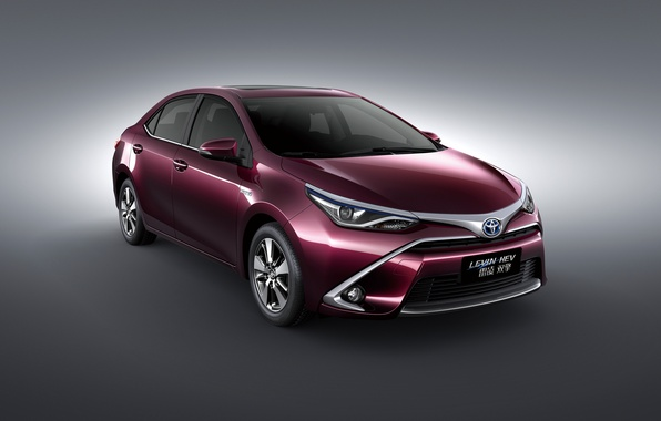 Picture Toyota, HEV, Toyota, 2015, Levin, Levin