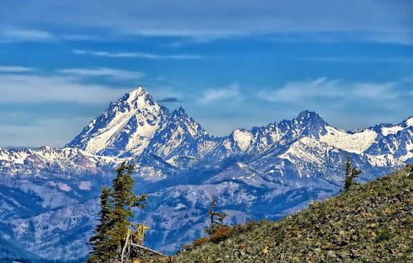 Picture trees, mountains, tops, slope, Washington, Mount Stuart