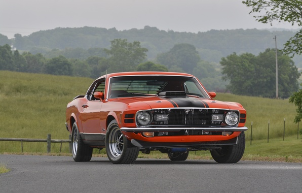 Picture Mustang, Ford, Mustang, Ford, 1970, Mach 1, 428, Super Cobra Jet