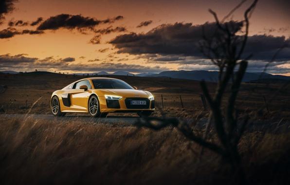 Picture car, auto, the sky, Audi, Audi, wallpaper, beautiful, V10