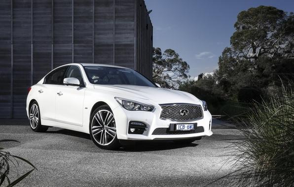 Picture white, Infiniti, sedan, infiniti, Q50