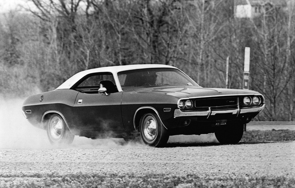 Picture machine, auto, photo, background, Wallpaper, black and white, Dodge, Challenger