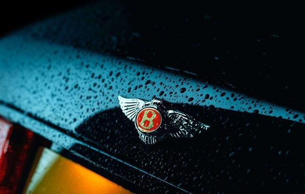 Picture drops, Bentley, logo, Bentley