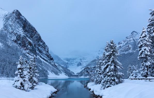 Picture winter, snow, trees, mountains, lake, ate, Canada, Albert, Banff National Park, Alberta, Lake Louise, Canada, …