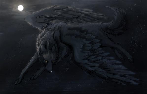 Picture night, the moon, wings, art, Wolf, art, Night Dreams, Dark_Sheyn