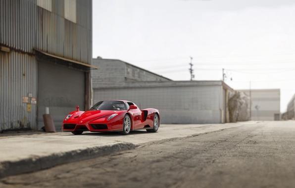 Picture Ferrari, Ferrari, Enzo, Enzo, 2014