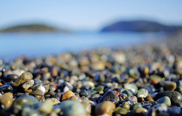 Picture beach, macro, pebbles, stones, photo, shore, wallpapers