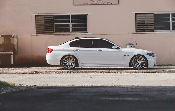 Picture white, bmw, BMW, white, drives, f10, tinted, 550i