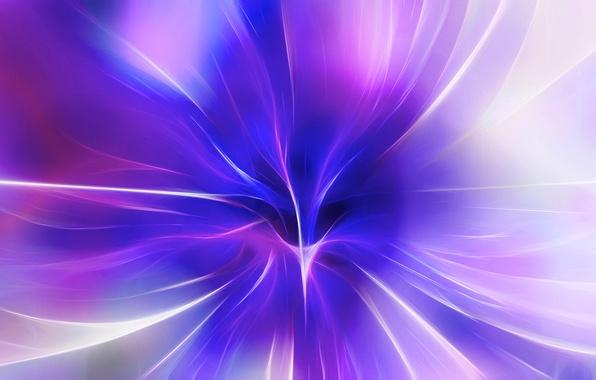 Picture flower, rays, light, line, color, petals, center