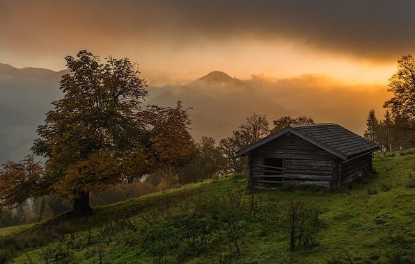 Picture house, Landscape, trees, sunrise, alipne