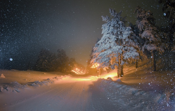 Picture winter, road, snow, night, tree, lighting, lights, snowfall