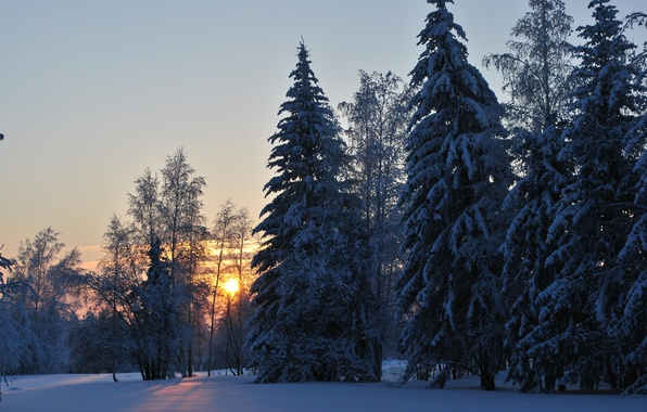 Picture cold, winter, forest, dawn, Ust ' -Kut