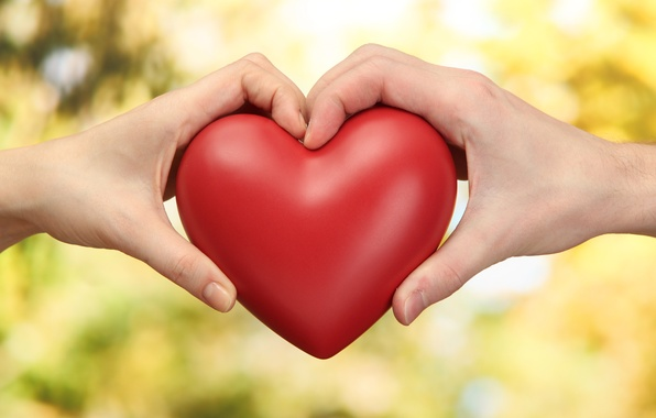 Picture heart, hands, pair