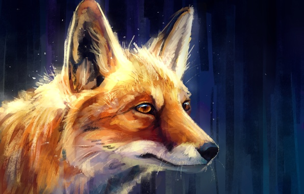 Picture Fox, profile, by AlaxendrA