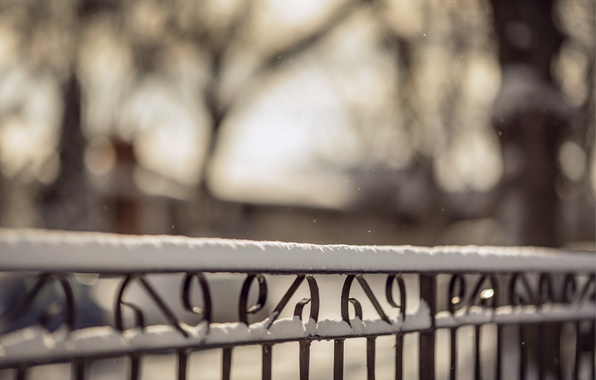Picture winter, macro, snow, nature, the fence, fence, blur, rods