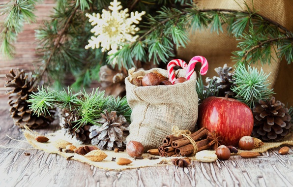Picture branches, holiday, new year, Apple, Christmas, candy, nuts, cinnamon, bag, needles, bumps, burlap, spices