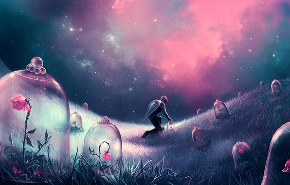 Picture field, flowers, night, people, roses, stars, art, shield
