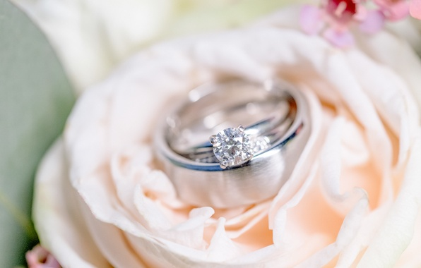 Picture flower, ring, wedding, engagement