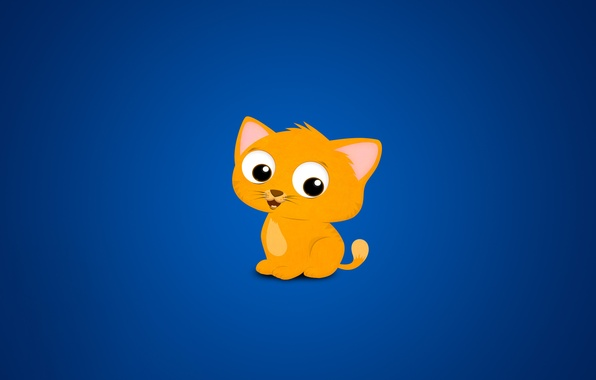 Picture cat, blue, yellow, background, cat, cats every where blue