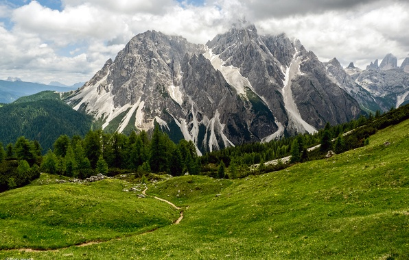 Picture forest, clouds, mountains, meadow, Italy, Sesto