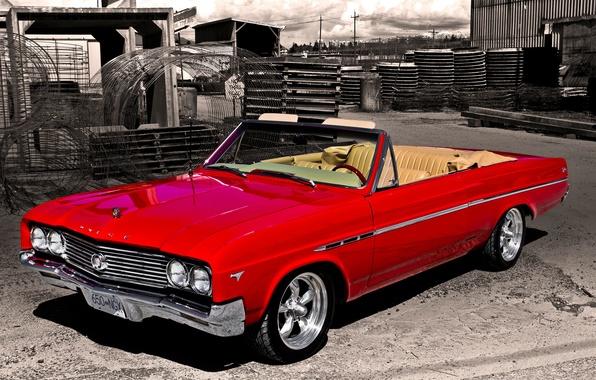 Picture retro, Buick, classic, 1965, Buick, Skylark