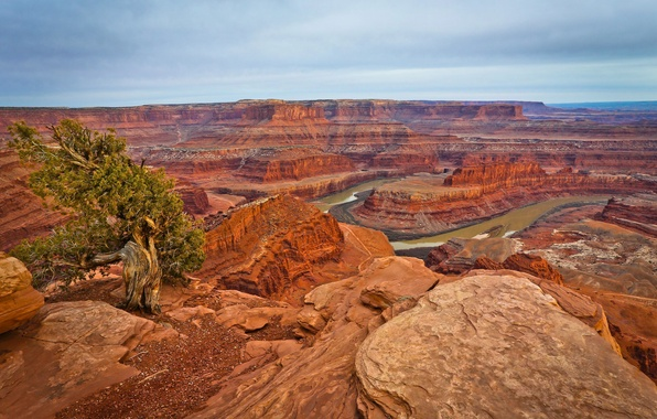 Picture the sky, clouds, mountains, river, tree, rocks, canyon