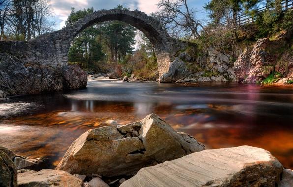 Picture landscape, bridge, river, Scotland, Carrbridge