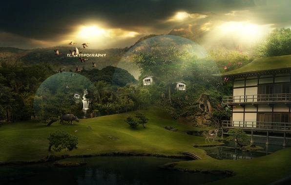 Picture animals, circles, bridge, nature, comfort, lake, house