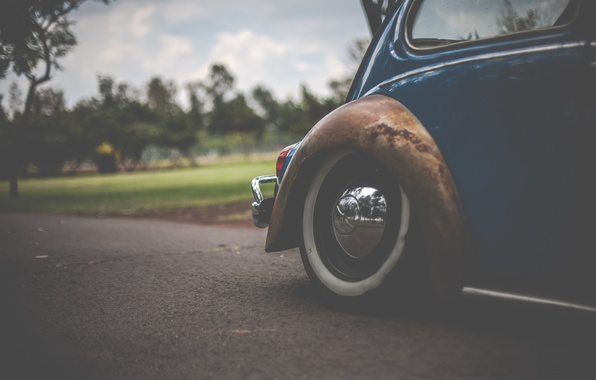Picture road, field, the sky, grass, clouds, trees, Volkswagen, wheel, Beetle, bokeh, tail light, rear bumper