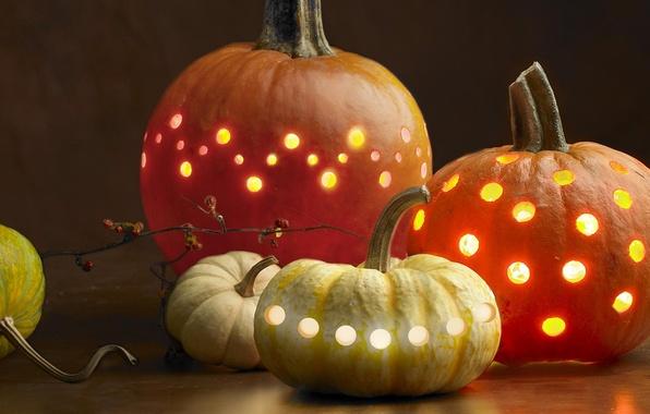 Picture light, holiday, pumpkin, Halloween, Halloween