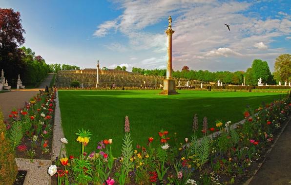 Picture grass, flowers, design, the city, photo, lawn, landscape, Germany, Potsdam, Brandenburg