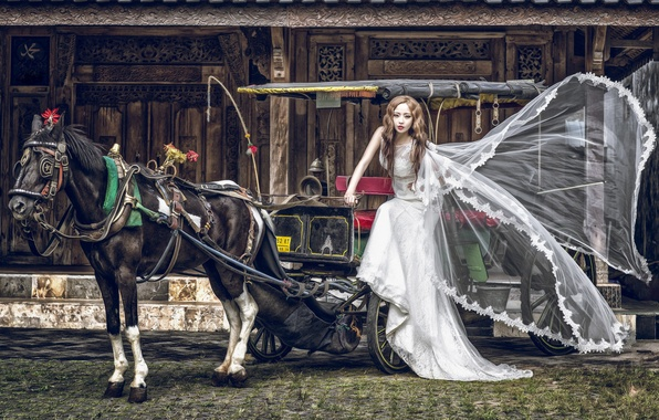 Picture girl, horse, horse, dress, wagon, Asian, the bride, nag