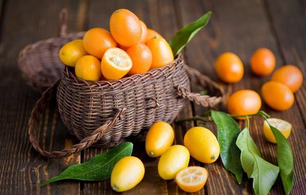 Picture leaves, fruit, orange, basket, citrus, Anna Verdina, kumquat